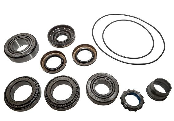 Rear diff pinion bearing overhaul kit  OEM - from BH257091